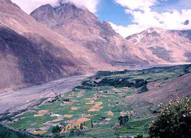Center Shimshal village, seen from the Adver Glacier's lateral moraine